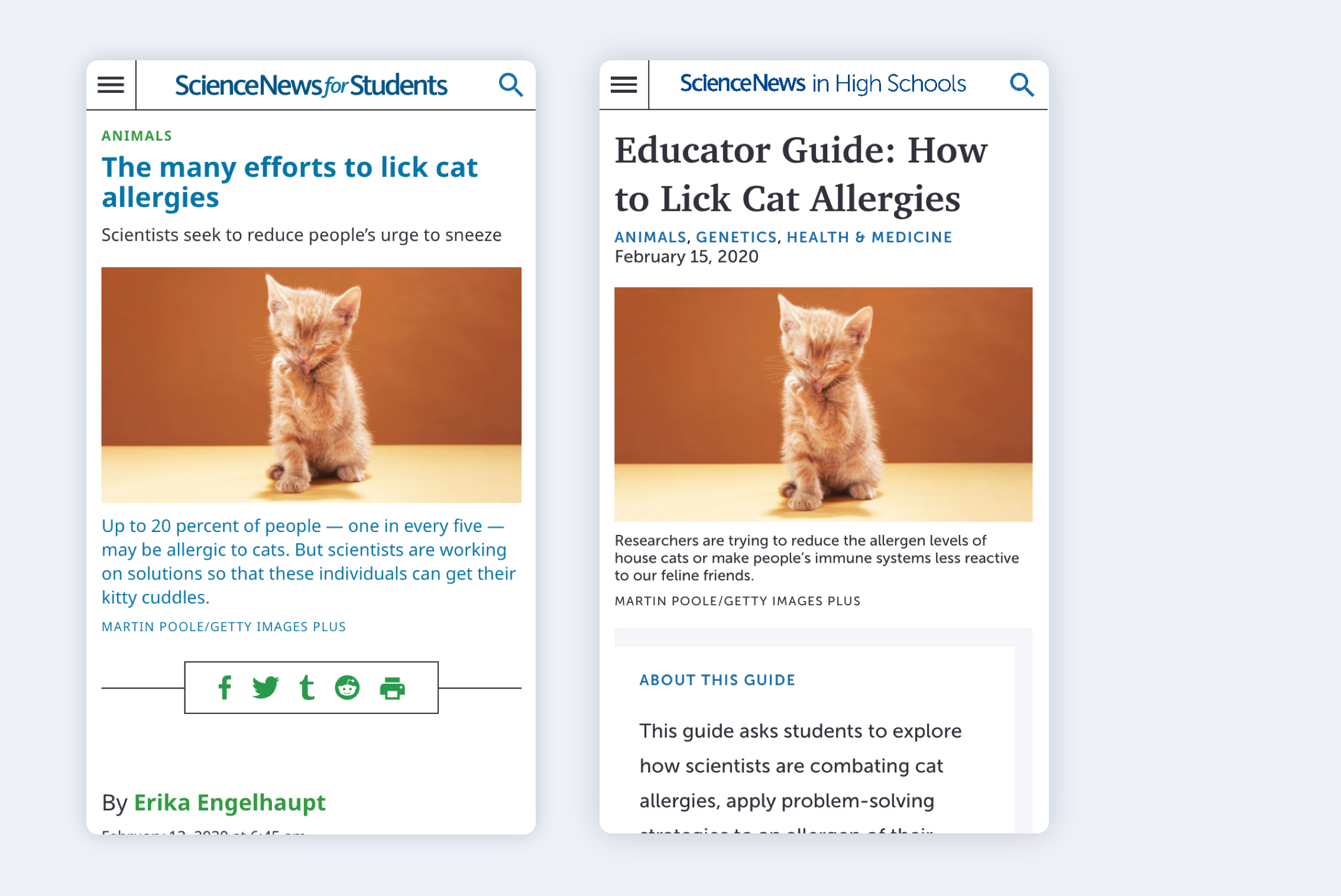 Images of the mobile sites for Science News for Students and Science News in High Schools, with a headline about cat allergies and a picture of a small kitten